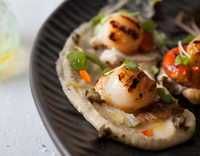 Scallops on Cauliflower & Ramara Puree